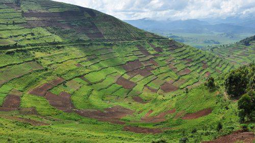 agro-tourism